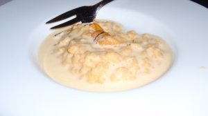 Barely Touched: Sea Urchin – Sea Urchin Risotto; Toasted Nori; Urchin - Citrus Emulsion