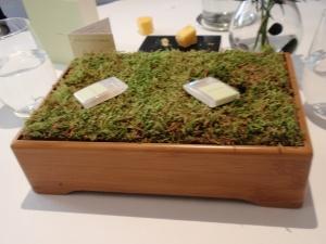 Oak Moss 1