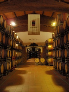the cellars at banfi - split over two levels