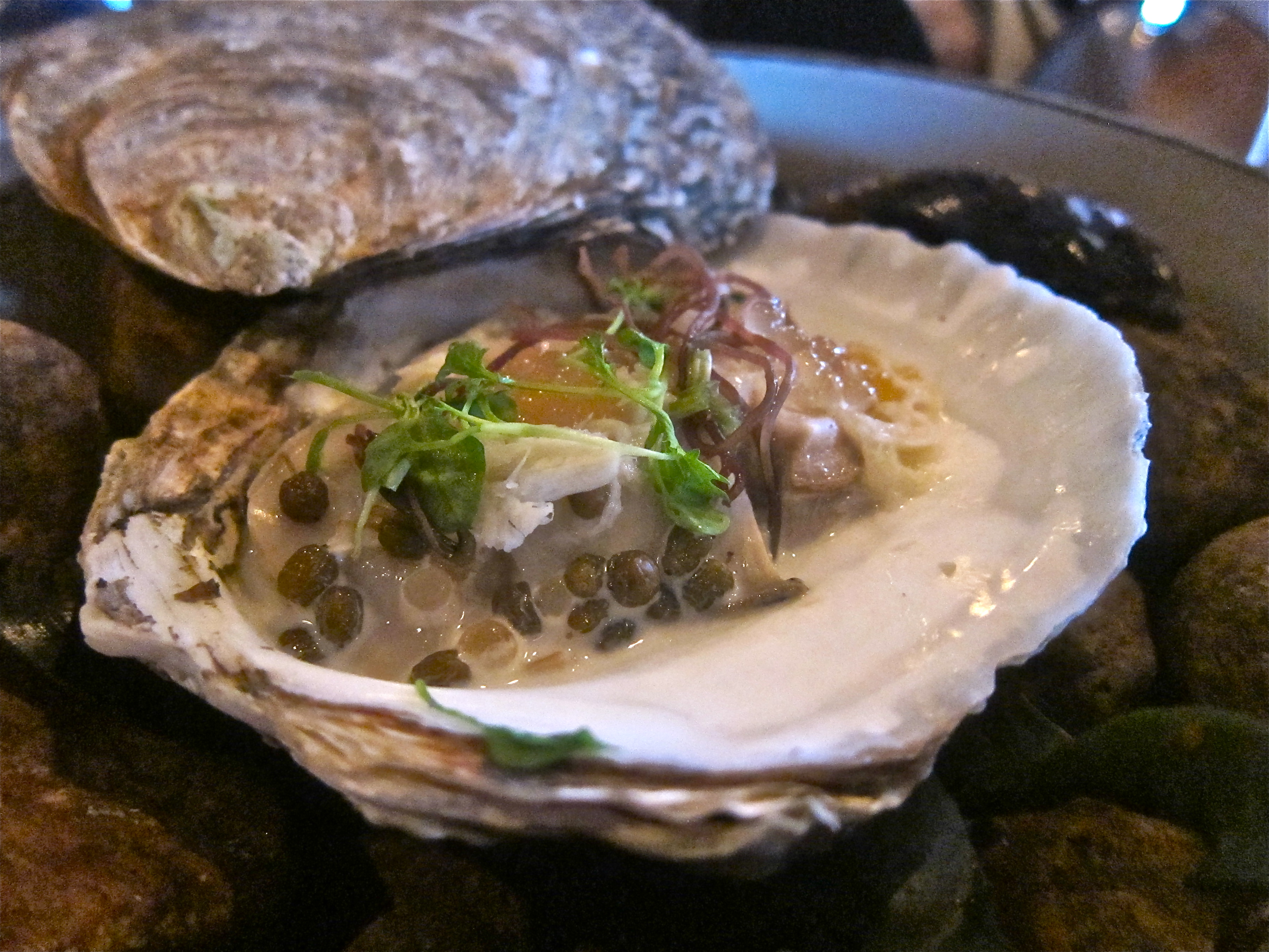 oyster personals Most of what i wrote about myself in the nerve personals was untrue i won't say  that  i am athletic yet like oysters and know how to eat them.